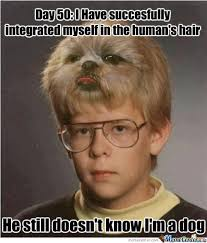 Bad Hair Day Memes. Best Collection of Funny Bad Hair Day Pictures via Relatably.com