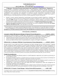 process manager resume aviation resum business process modelling process lead resume process lead resume