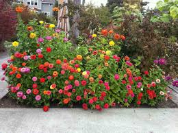 Small Picture Bedroom Architecture Designs Flower Garden Design Plans Garden