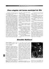 (PDF) Flora singular del terme municipal de Sils: Simethis mattiazzi