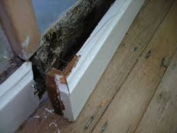 Image result for MOLDY BASEBOARD
