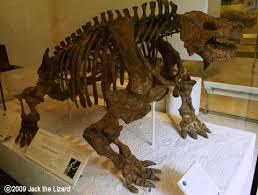 Resultado de imagem para scutosaurus