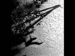 <b>Max Richter</b> - On the Nature of Daylight - YouTube