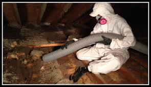 attic cleaning service orange county >clean up attic experience cleaners to clean up your attic