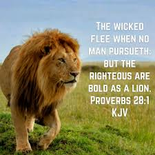 Image result for PROVERBS 28:1