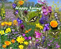 Image result for spring indonesia gif