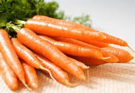 蘿蔔屬類蔬菜的圖片搜尋結果