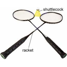 Image result for badminton