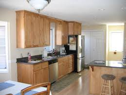 Kitchen Custom Cabinets Honey Oak S Maple Beadboard Light Frameless Paint Colors With Contemporary Kitchens For   R