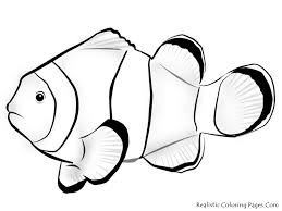 tropical fish coloring pages this printable nemo fish coloring pages
