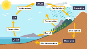 bbc bitesize   higher geography   the global hydrological cycle    the global hydrological cycle