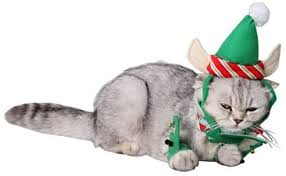 ANIAC Cute Cat Dog Christmas Costume Xmas ... - Amazon.com