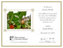last minute holiday gift idea plant a fruit tree to celebrate a plant a tree certificate template