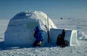 Image result for igloo houses