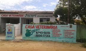 Resultado de imagem para FOTO DE RECEITA DE JACARÉ