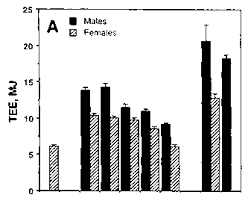 The prediction of basal metabolic rate in female patients with