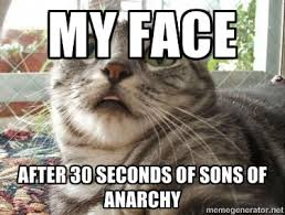 My face After 30 seconds of Sons of Anarchy - scared cat | Meme ... via Relatably.com