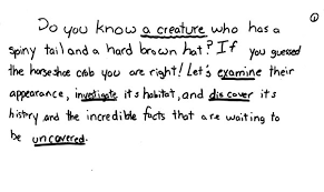 here is a cute sample of expository writing from a 4th grade student what is an expository essay examples