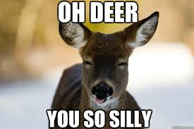 Silly Deer memes | quickmeme via Relatably.com