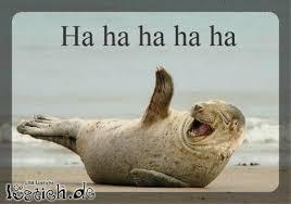 Bildergebnis für bilder von lachenden tieren