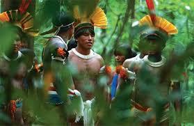 Resultado de imagem para indios no brasil