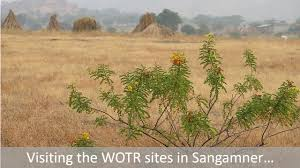 ing wotr s sangamner sites a photo essay by lucia please have a look at a few of lucia and georgina s learnings in this photo essay