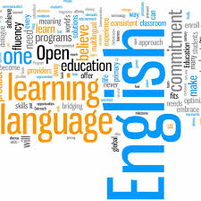 the importance of english language hamaray essays english language