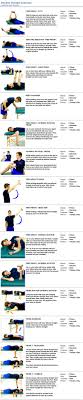 17 best ideas about shoulder joint arm muscles rotator cuff exercises shoulder strength exercises nova therapy massage london personal training nutrition