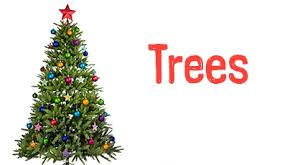 image result for buy environmentally friendly christmas tree online to save time buy environmentally friendly