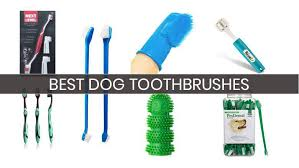 10 Best <b>Dog Toothbrushes</b>: Your Buyer's Guide (2019) | Heavy.com