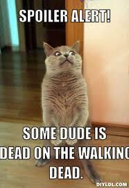 The Walking Dead Memes - Punk Forum - Punkrockers.com via Relatably.com