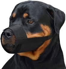 CollarDirect Adjustable Dog Muzzle Small Medium ... - Amazon.com