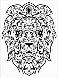 Small Picture Homely Inpiration Lion Head Coloring Pages LION HEAD Colouring In