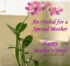 Mother's Day on Pinterest   Mothers Day Quotes, Mother's Day and Happy