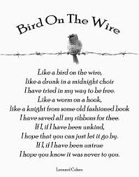 Image gallery for : bird on a wire quotes