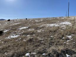 <b>Lot</b> 321 <b>Shining</b> Mountains I | Hayden Outdoors