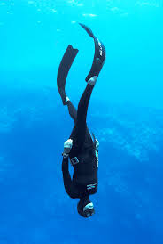 Image result for freediving