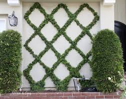 How to Make a <b>Diamond Pattern</b> Espalier: Creating a Belgian Fence
