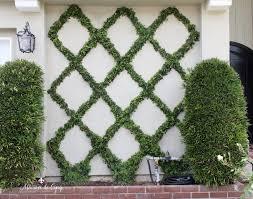 How to Make a <b>Diamond Pattern</b> Espalier: Creating a Belgian Fence