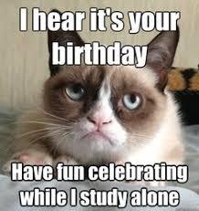 Grumpy Cat Birthday on Pinterest   Grumpy Cat, Grumpy Cat Cakes ... via Relatably.com