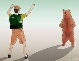 「熊 対処 画像」の画像検索結果