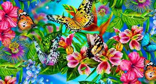 Resultado de imagen de bandadas de mariposas
