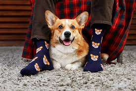 <b>Носки</b> | Купить модные цветные <b>носки</b> Happy Socks