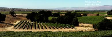 Image result for arroyo seco wine map