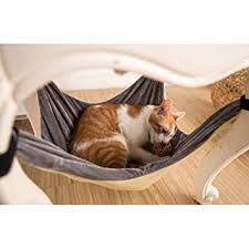 Amazon.com: <b>Cat Hammock Bed</b> - Soft Warm and Comfortable Pet ...