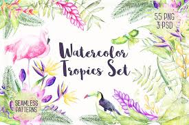 <b>Watercolor Tropical Plants</b> 30 % OFF ~ Illustrations ~ Creative Market