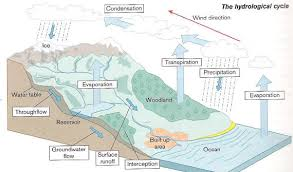 gcse rivers revision hydrological cycle