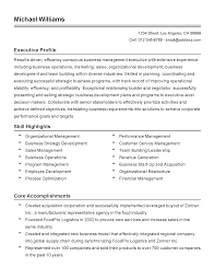 professional business development executive templates to showcase resume templates business development executive