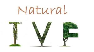 Image result for Natural Cycle IVF-