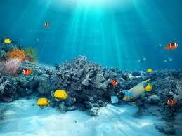 Αποτέλεσμα εικόνας για θαλασσα